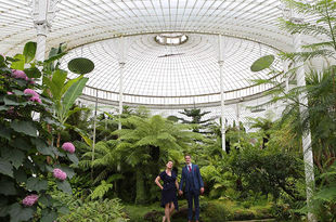 Mariuca and George's intimate wedding at Kibble palace, Botanic Gardens, Glasgow